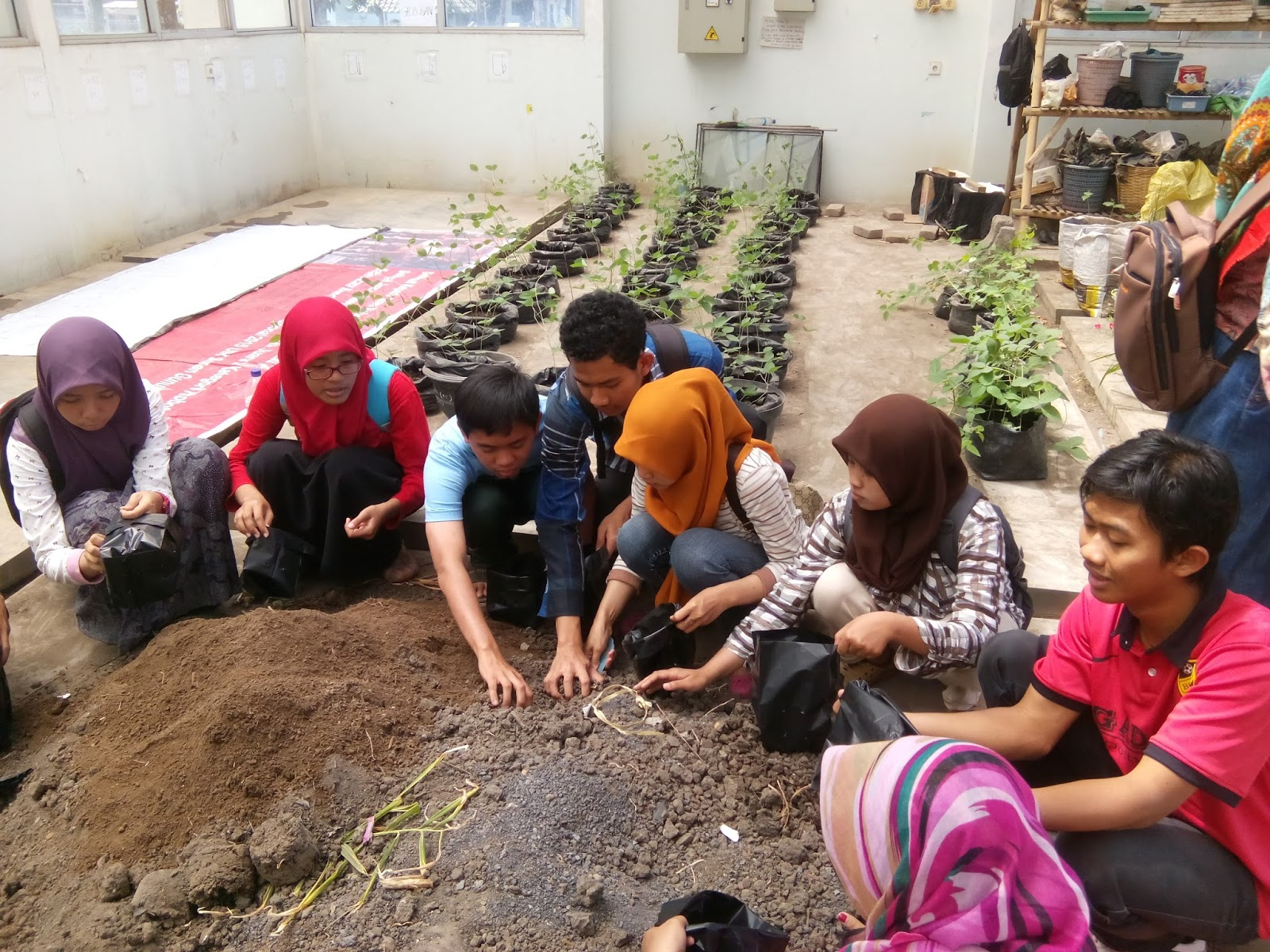 Youth for Climate Change, Indonesia