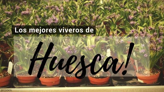 Listado de los Mejores Viveros de la Provincia de Huesca, España, donde puedes comprar plantas para tus proyectos