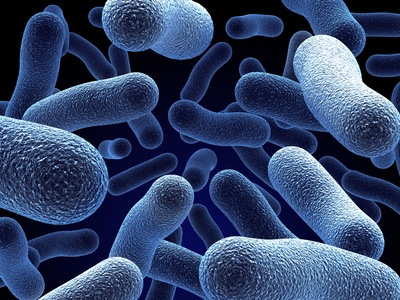 The dangers of genetically modified micro organisms in air