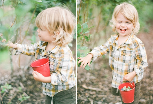Blueberry Picking with Tavish, Pierson & Lexia - Fine Art Film Photography by Lexia Frank