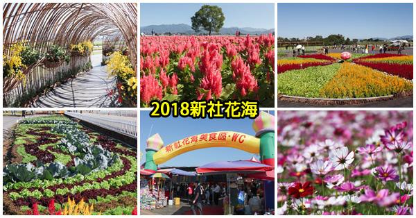 台中新社|2018新社花海12/1-12/16|大地畫布|可食地景|客家文化意象