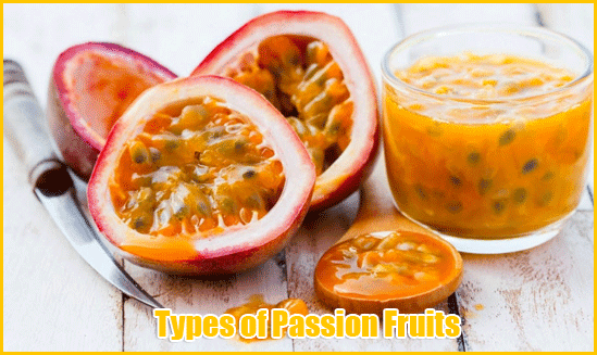 Types-of-Passion-Fruits