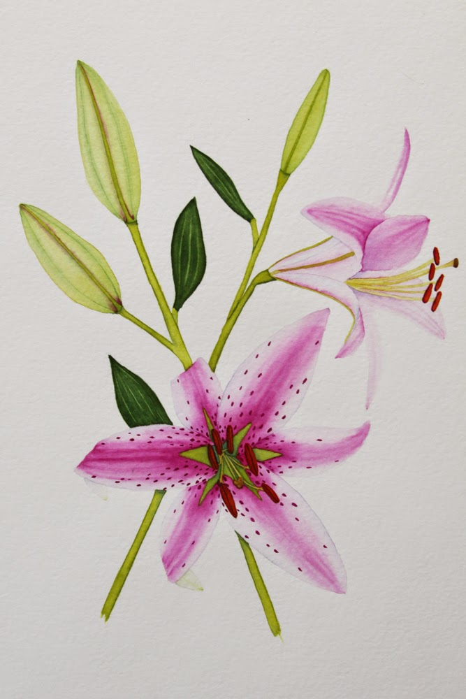 watercolor lilies painting