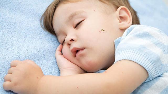 mengusir nyamuk, cegah anak dari demam berdarah, cegah anak dari malaria, obat nyamuk yang aman untuk bayi