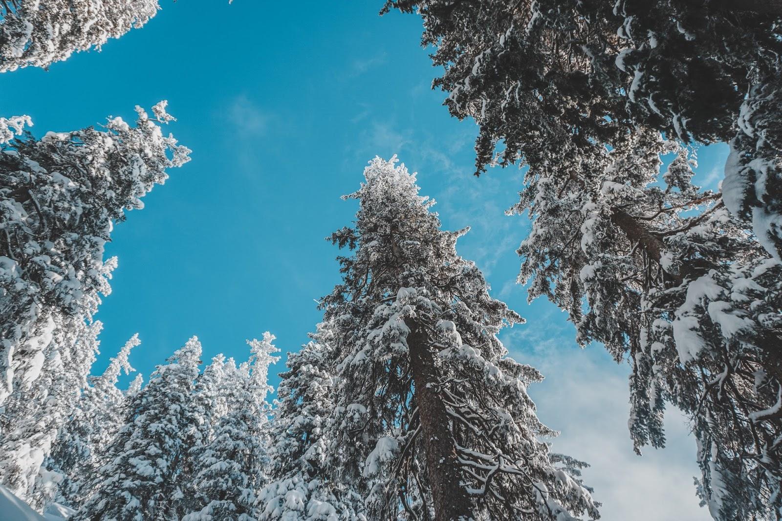 Austria trekking, blog o życiu w Austrii, blog lifestyle, blog podróżniczy, co warto zobaczyć w Austrii, trasa trekkingowa w Austrii, Austria zimą, góry, Alpy