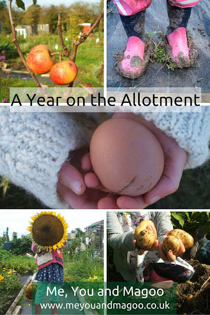 five ways an allotment has a positive effect on family life