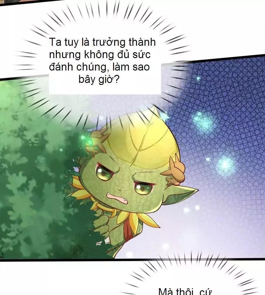 Hoàng Đế Bệ Hạ Đích Thiên Giới Bảo Bối Chapter 73 - Trang 30