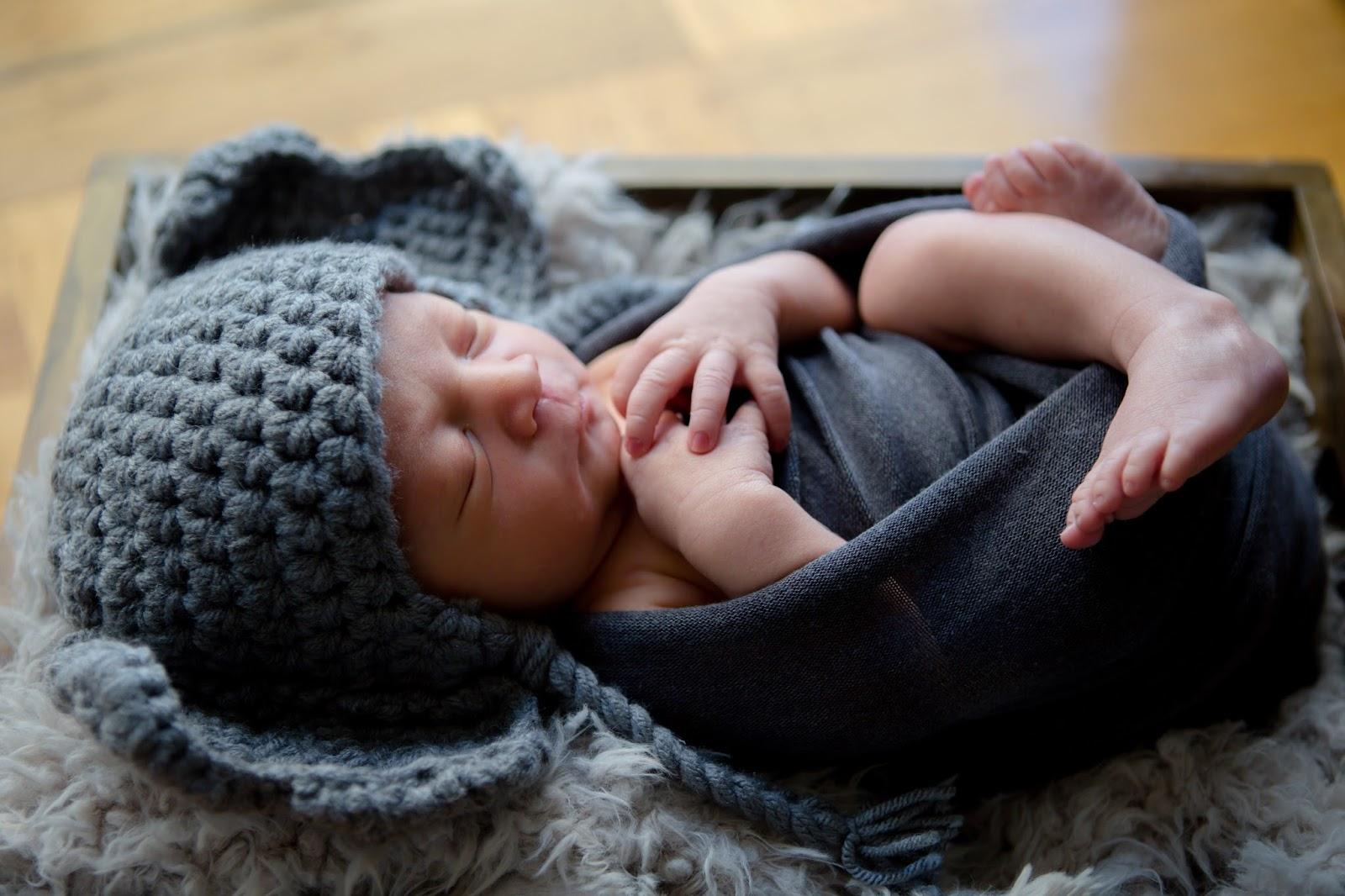 newborn baby boy elephant