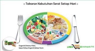 manfaat-serat-bagi-kesehatan
