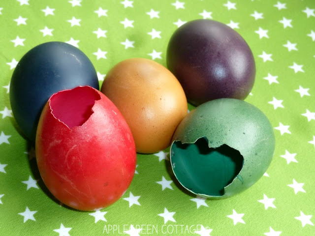 Easter eggshell garden decoration and spring gardening