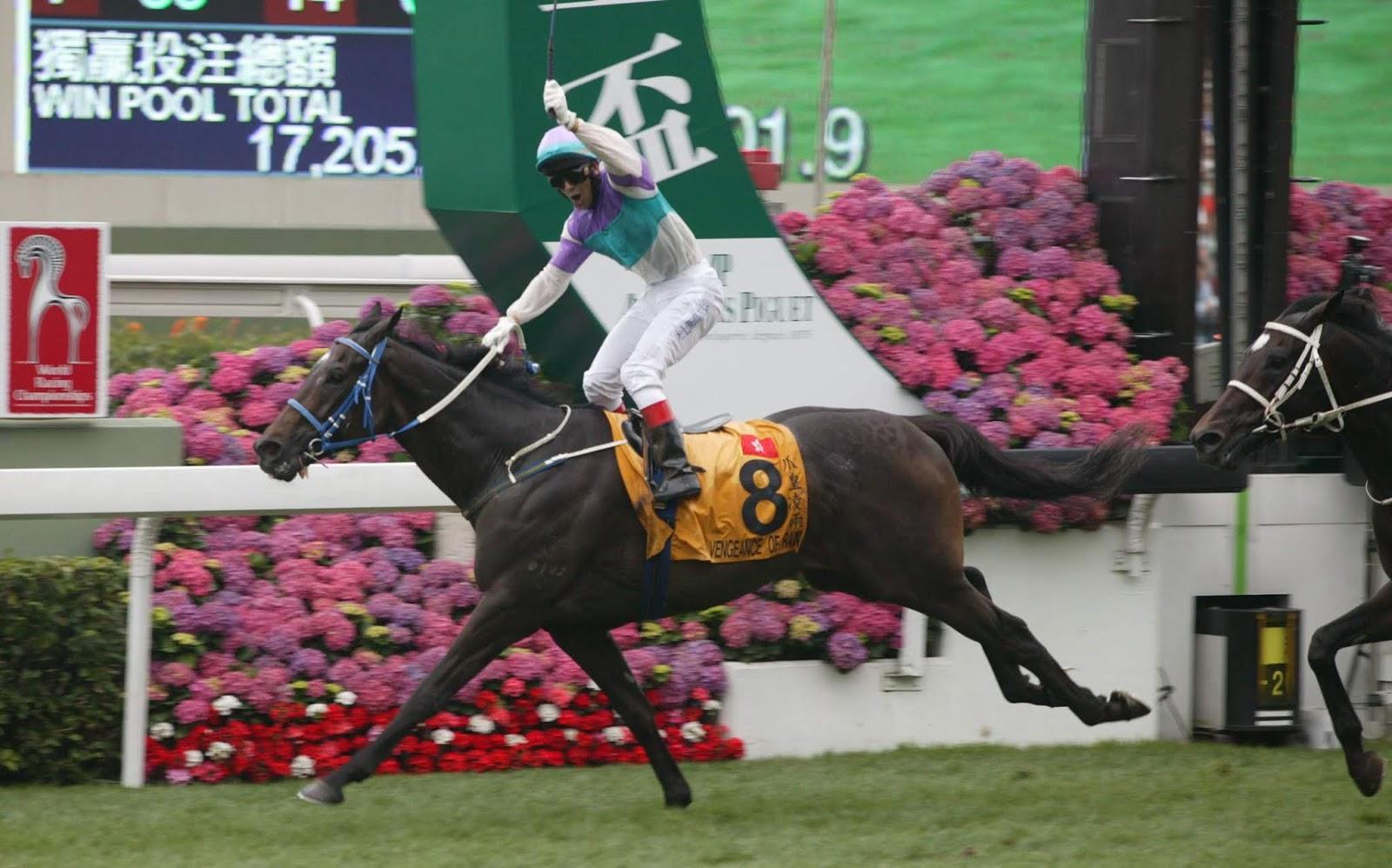 Vengeance Of Rain - Horse winning the QEII Cup