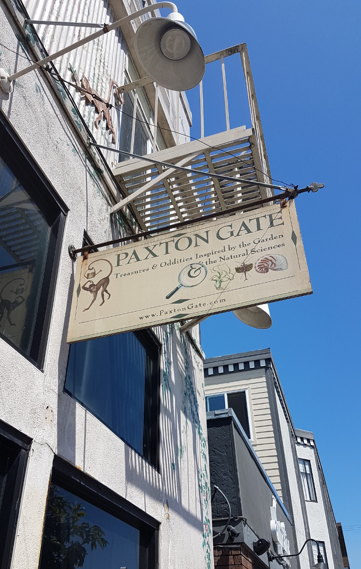 Travel: California Diaries - San Francisco pt. 2 Paxton Gate