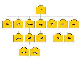 Mengenal Struktur Direktori Linux