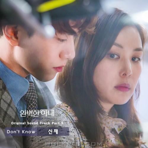 Shin Jae – Ms. Perfect OST Part.5
