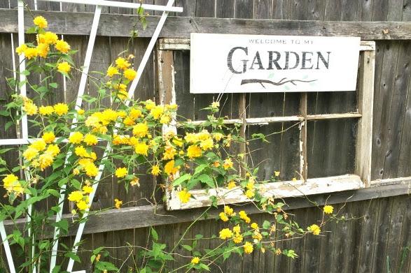 Ten Best Easy DIY Garden Ideas