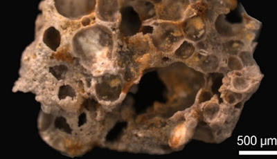 Fosil Gelembung Oksigen 1,6 Miliar Tahun Yang Lalu