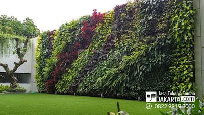 jasa pembuatan taman vertikal garden