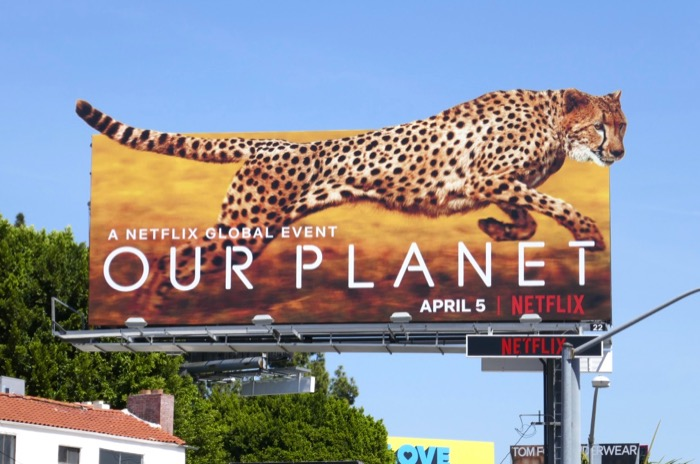 Our Planet Cheetah extension billboard