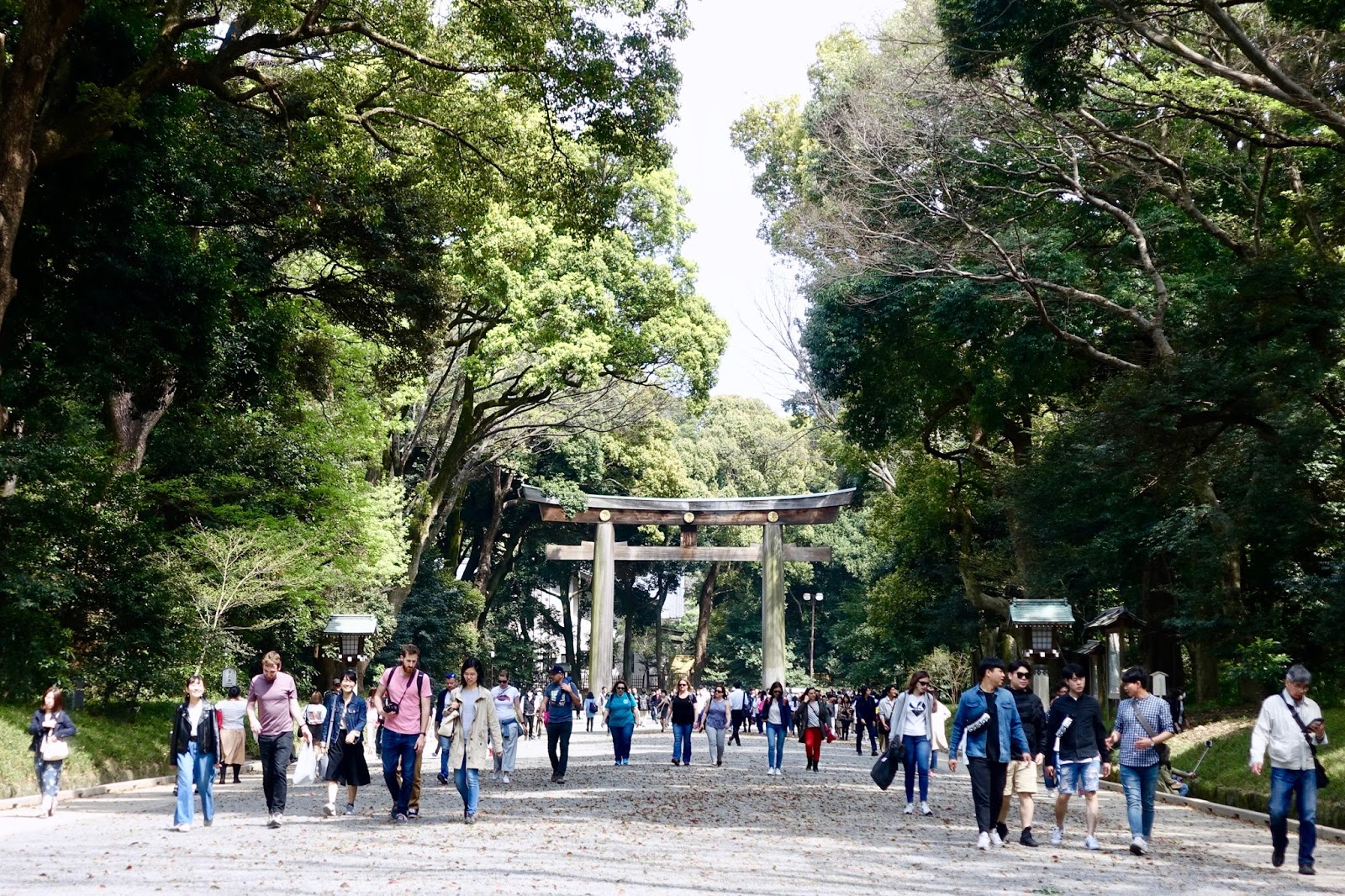 TORI GATES, MEIJI SHRINE JAPAN