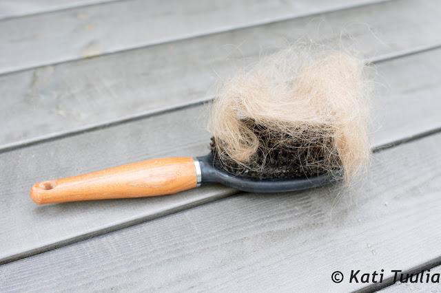 Raskauden jälkeinen hiustenlähtö