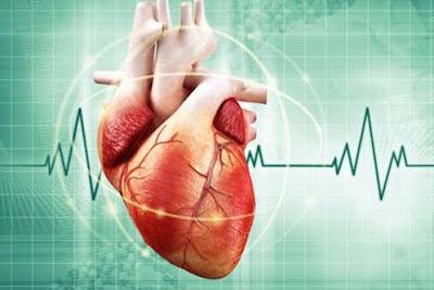Cara Mengobati Aritmia Jantung Secara Alami