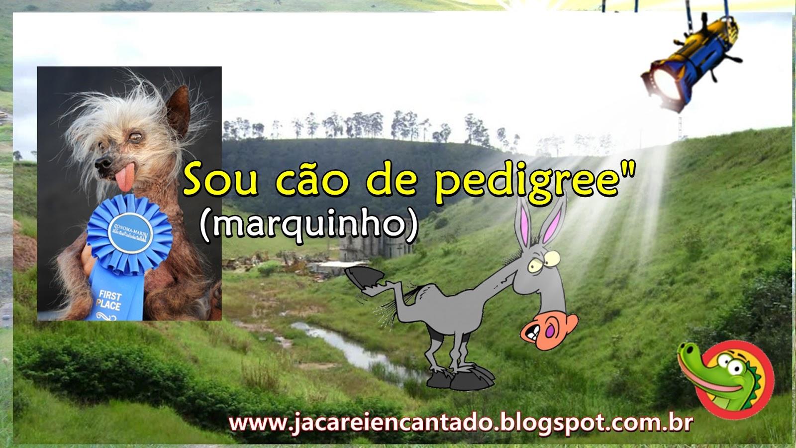 blog oficial . SANTUÁRIO DAS APARIÇÕES DE JACAREÍ. são falsas, são verdadeiras, vidente Marcos Tadeu