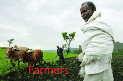 Farmers+are+critical
