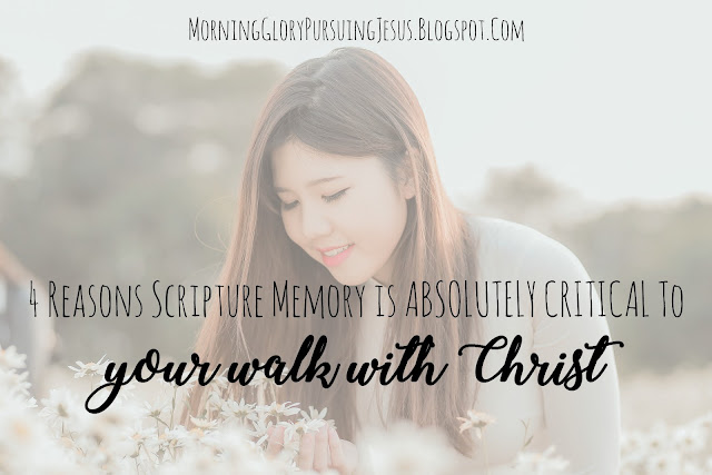 Why Scripture Memory Is Absolutely Critical to Your Walk With Christ