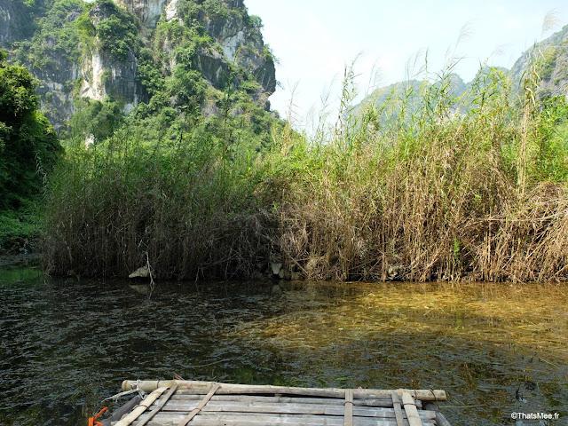 reserve van long ninh binh vietnam campagne baie halong terrestre bateau barque bambou sampan riviere