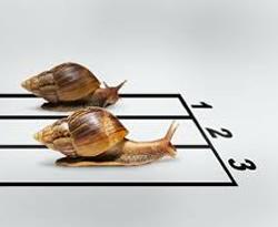 inutilità della competitività