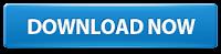 http://www.nsauditor.com/downloads/nsauditor_setup.exe