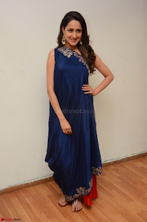 Pragya Jaiswal in beautiful Blue Gown Spicy Latest Pics February 2017 059.JPG