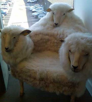 Sillón con lana de borrego