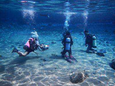 Diving Umbul Ponggok