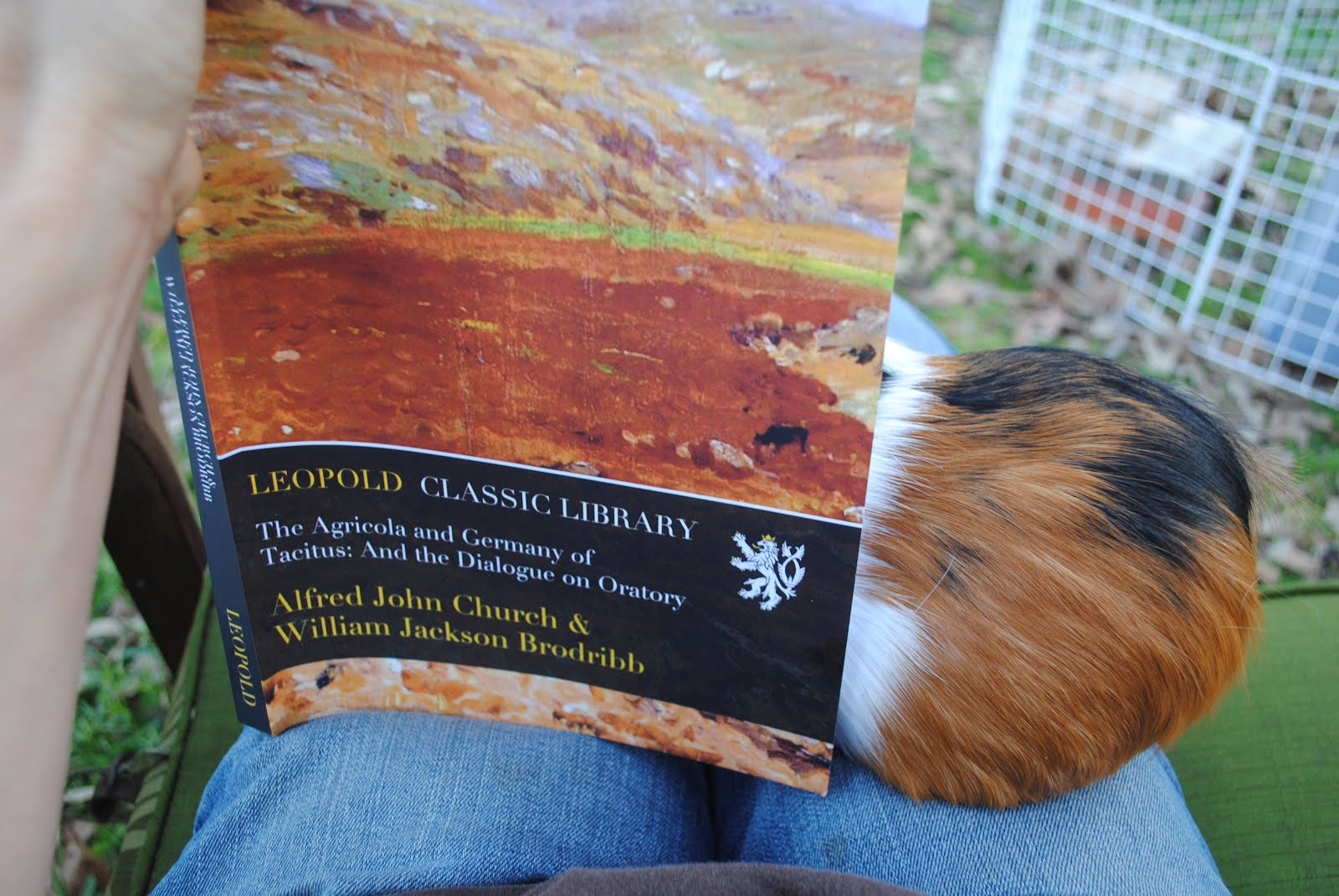 Percy likes a good translation of Tacitus