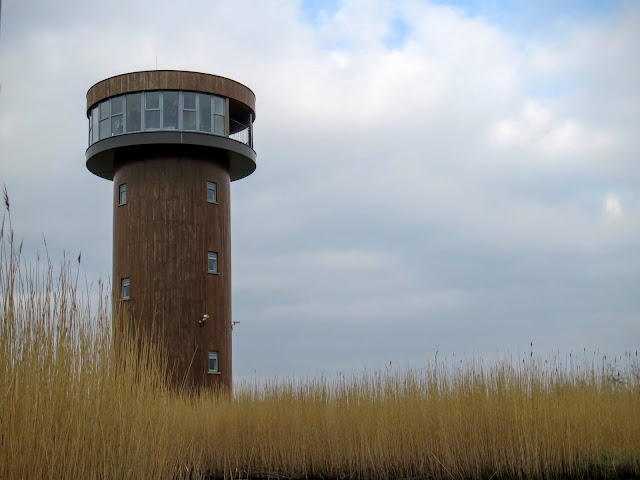 Day Trip from Dingle Town to Tralee - Bird Hide Tower at Tralee Bay Wetlands