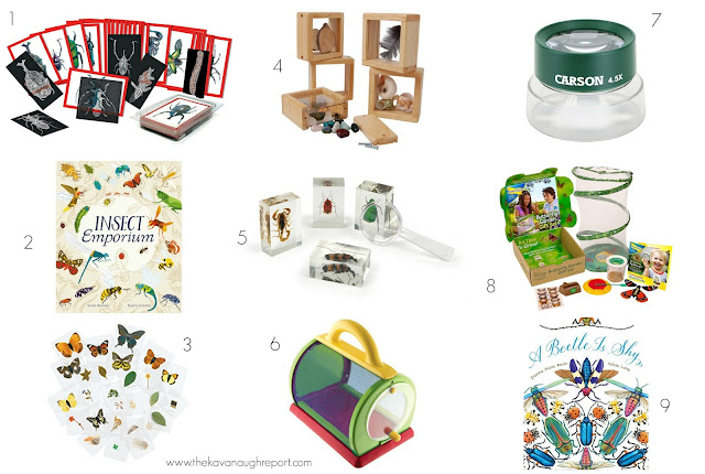 Montessori friendly insect materials for 3-year-olds.