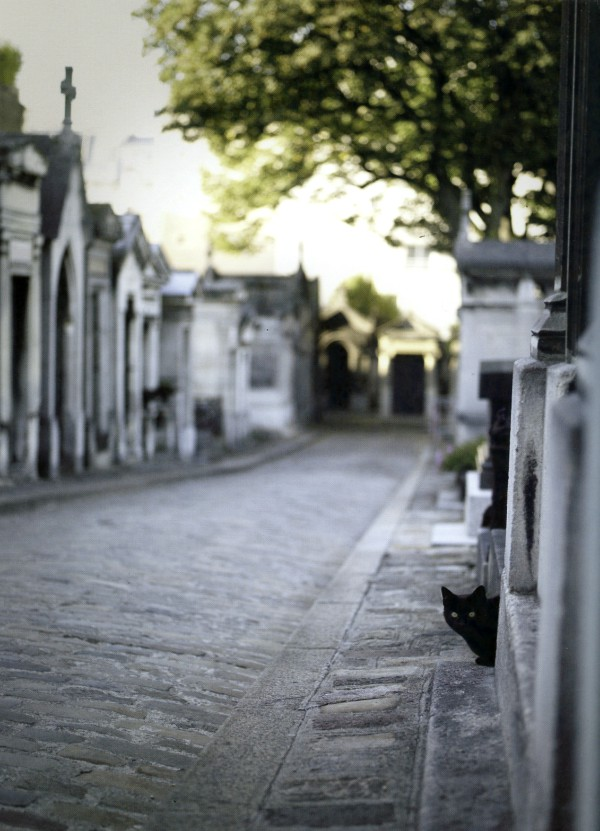 paris famous cemetery