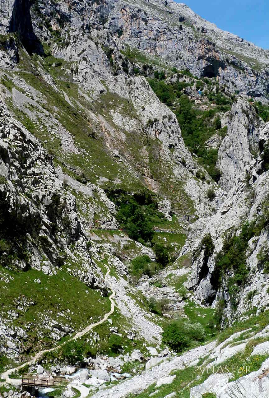 Picos de Europa: PR-PNPE 19: Canal de Camburero