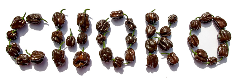 Chocolate habanero chili CHOKO sign