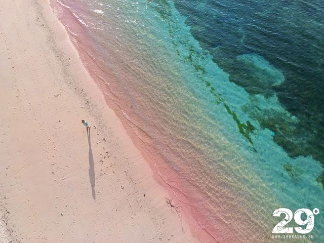 En rosa sandstrand