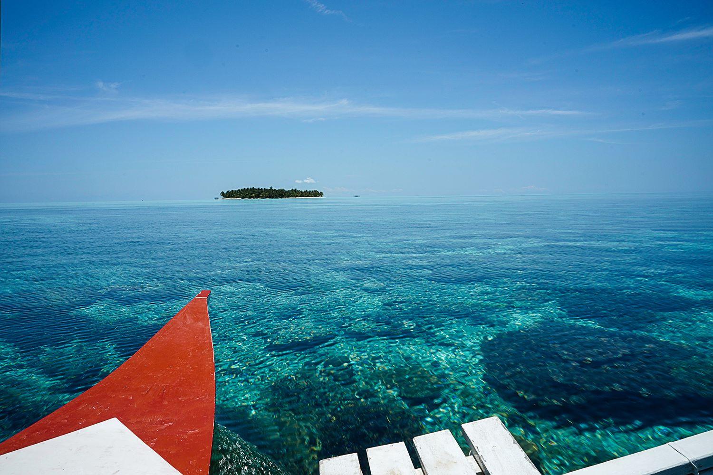 corals of onuk island balabac philippines