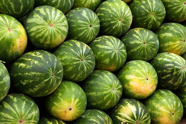 How To Plant Watermelon In Nigeria