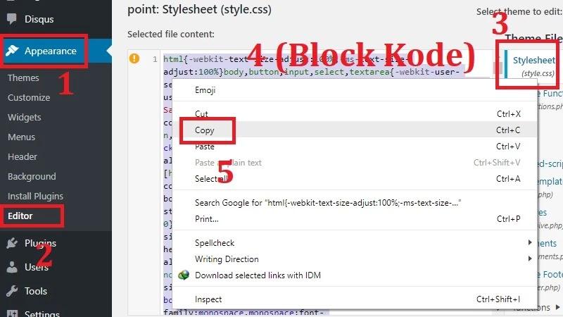 1. Buka file style.css pada situs anda lalu Copy semua kode CSS yang ada.
