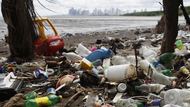 Confirman que los cuerpos de los humanos están 'contaminados' con plástico