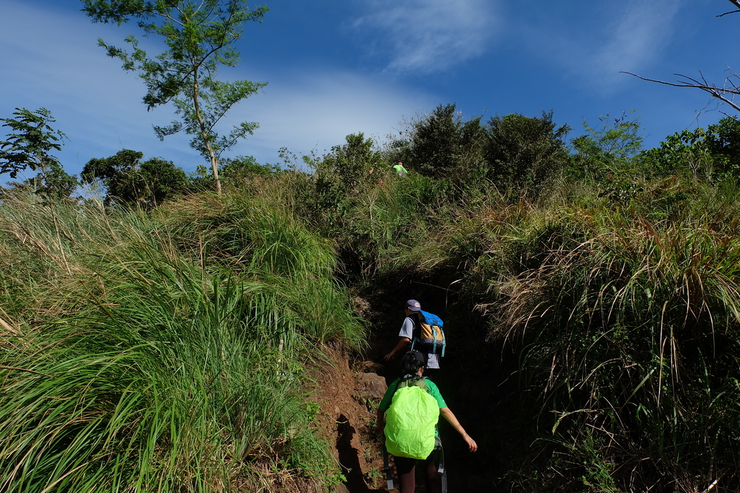 Mt. Maculot trail