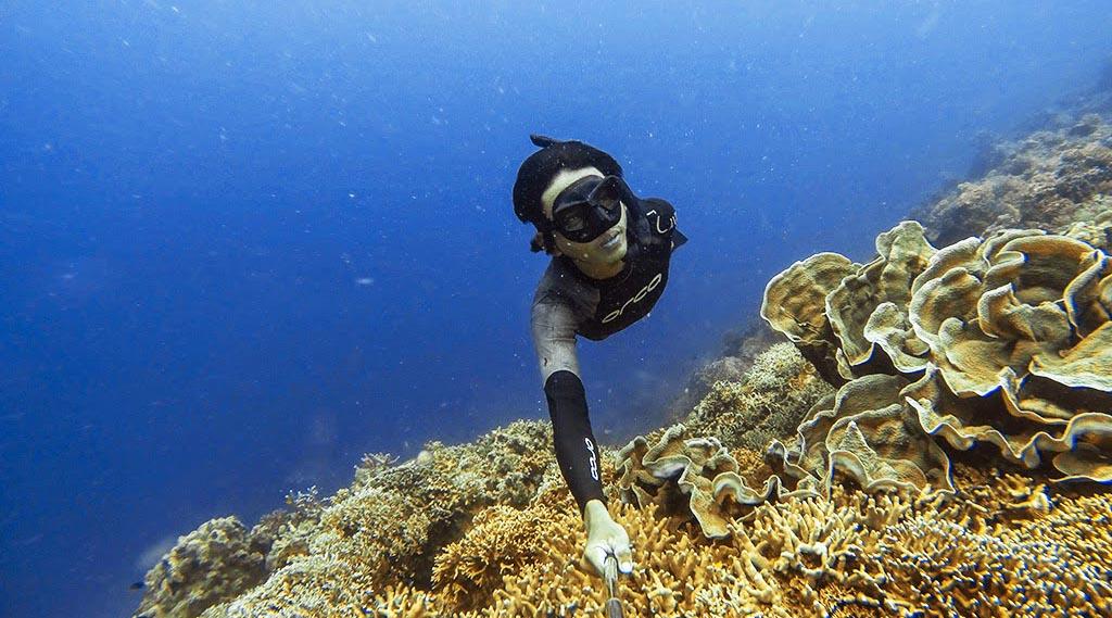 spor diving indah manis dan cantik dengan ikan di bawha laut