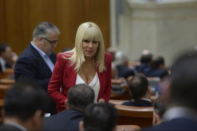 Elena Udrea, Románia, parlamenti választások, korrupció, DNA, Traian Băsescu, PMP