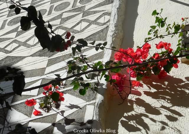 kwitnąca Bugenwilla na tle geometrycznego ściennego malowidła