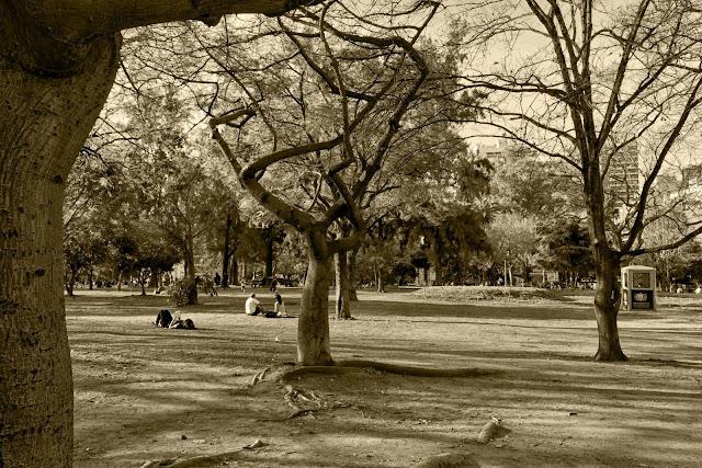 Gente descansando en Parque